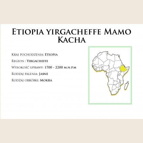 Etiopia Yirgacheffe Drip