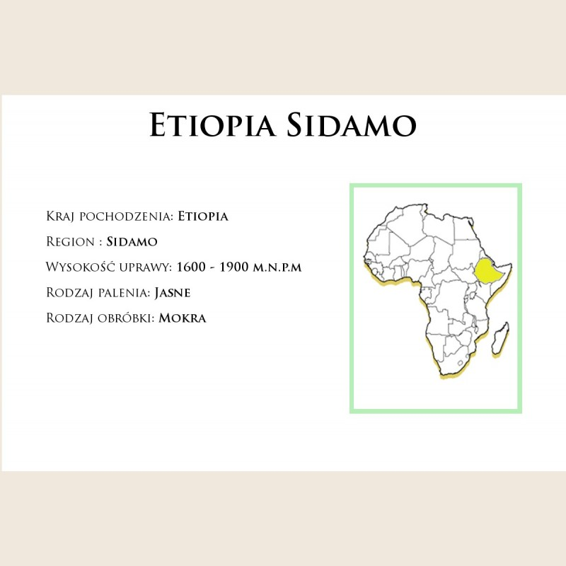 Etiopia Sidamo Drip