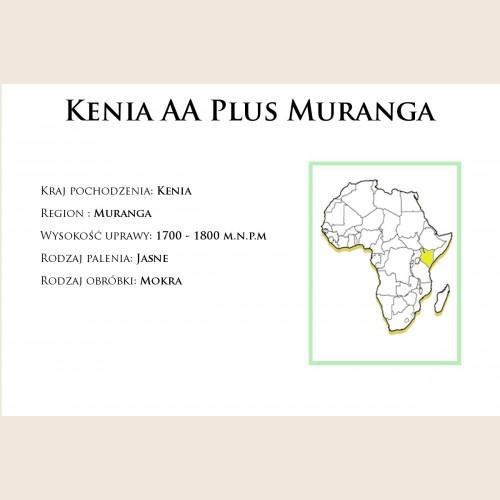 Kenia AA Plus Muranga