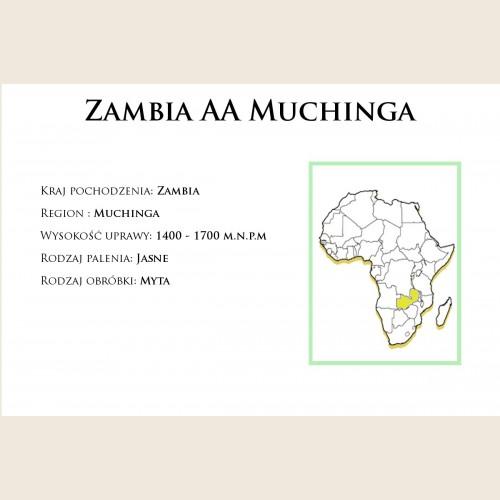 Zambia AA